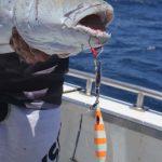 Montebello Islands Fishing charter Blue Lightning Charters