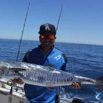 Spanish Mackerel WA fishing charter Blue Lightning Chartters Chad Mills