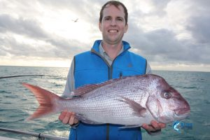 Pink Snapper Abrolhos Islands Blue Lightning Fishing charters
