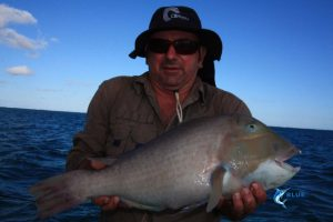Baldchin Groper WA fishing charter Blue Lightning