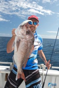 Pink Snapper fishing Abrolhos Islands