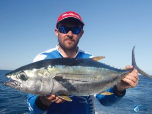 Abrolhos Islands WA fishing charter Yellow Fin Tuna