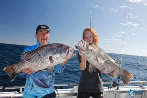 Dhu Fish couble header Blue Lightning Charters Abrolhos Islands