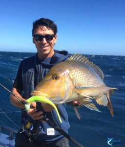 Abrolhos Islands fishing Jason Taylor