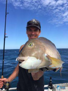 Baldchin Groper Blue Lightning Charters WA fishing