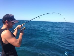 reeling in a fish Abrolhos Islands