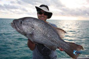 Dhu Fish WA fishing charter Abrolhos Islands