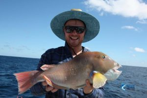 Baldchin Groper Abrolhos Islands fishing charter WA