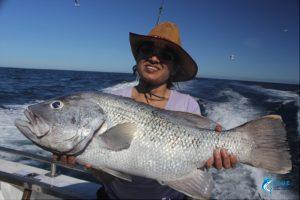 Fishing WA Abrolhos Islands Dhu Fish novice fisherman