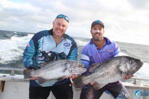 Dhu Fish double header Abrolhos Islands WA fishing