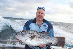 Dhu Fish Blue Lightning Charters Abrolhos Islands best