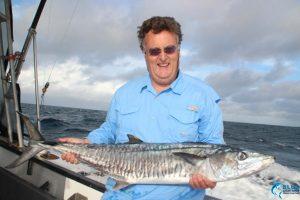 Abrolhos Islands spanish mackerel