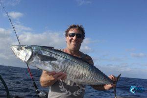 Spanish Mackerel Blue Lightning Abrolhos Islands