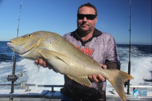 spangled emperor Abrolhos Islands wa best fishing charter beginner