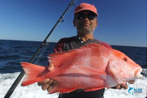 Red Emperor WA fishing charter blue Lightning charters