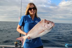 Pink Snapper Abrolhos Islands Chad Mills fishing