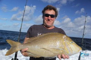 Spangled emperor abrolhos islands wa fishing charter