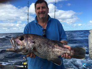 Dhu Fish Abrolhos Islands WA best fishing