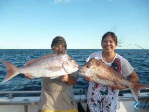 Pink Snapper Abrolhos Islands Wa fishing charter blue lightning fishing charter