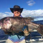 Dhu Fish Abrolhos Islands Western Australia Chad Mills Blue Lightning Fishing Charters