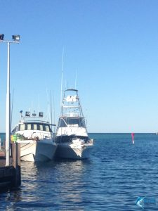 Blue Lightning and Reely Black WA fishing charters