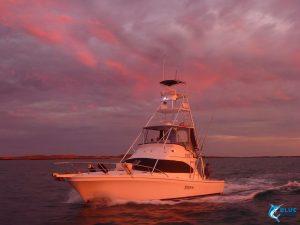 Reely Black Blue Lightning WA best fishing charters