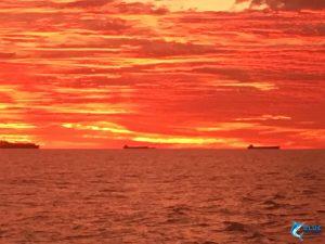 WA seascape fishing charter eco tourism