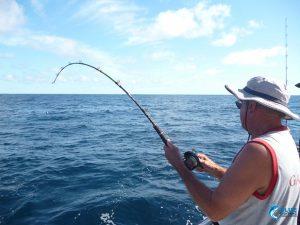 Western Australia fishing blue lightning charters