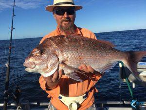 Pink Snapper Blue Lightning Fishing Charter