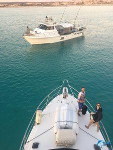Reely Black Marlin Tower WA fishing charter