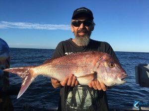 Abrolhos Islands Pink Snapper Blue Lightning Charters