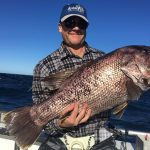 Dhu Fish Blue Lightning WA fishing charters
