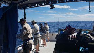 Blue lightning charters montebello Islands fishing charter WA best fishing