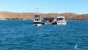 Blue Lightning Charters pontoon montebello islands wa cod cave live aboard fishing charter