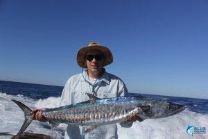 Spanish Mackerel WA fishing Montebello Islands fishing