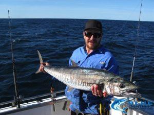 Spanish Mackerel WA best fishing montebello isalnds blue lightning fishing charters