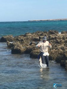 WA best fishing charter Montebello islands wa blue lightning charters