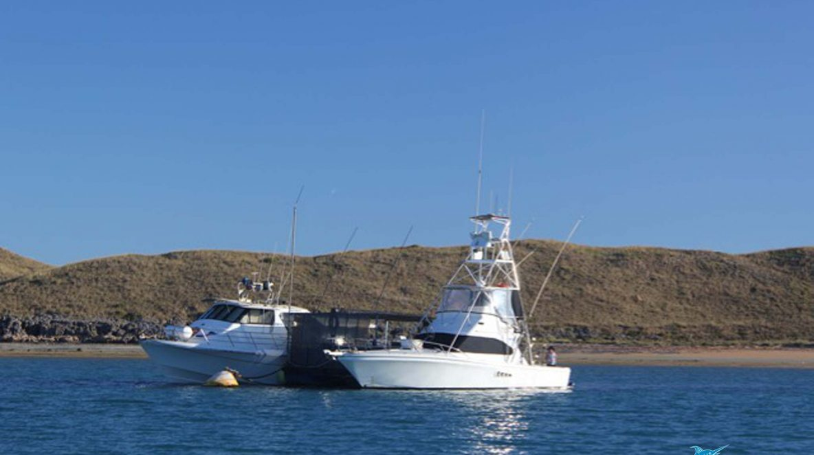 Blue Lightning charters pontoon cod cave montebello islands home