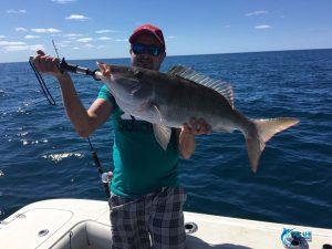 Long Nose Emperor Blue lightning fishing charters Captain Chad Mills skipper