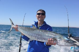 Montebello Islands sports fishing spanish mackerel