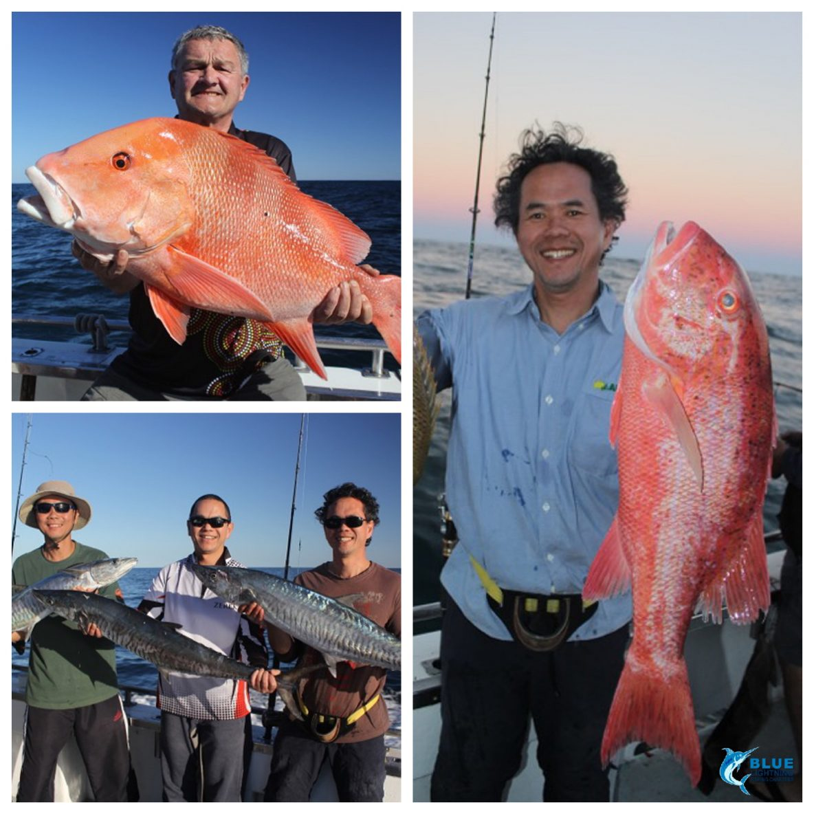 Week 4 montebello islands fishing collage blue lightning charters