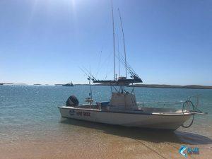 Heartstarter Blue Lightning charters fleet island fishing