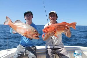 Montebello Islands WA fishing charter Coral Trout WA species Blue lightning charters