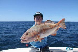 WA fihsing charter Coral Trout Monte Bello Islands
