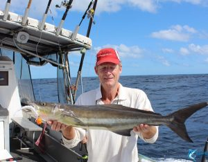 Cobia plastics fishing wa montebello islands blue lightning charters