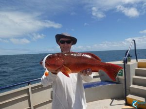 Coral Trout karratha wa fishing charter