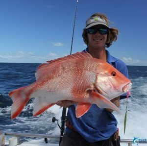 red emperor bottom fishing wa montebello islands