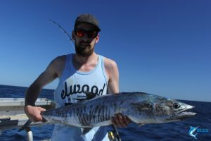 Spanish Mackerel Montebello Islands wa fishing charter blue lightning charters
