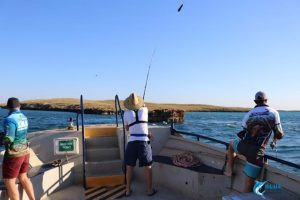 Blue lightning fishing charters montebello islands WA