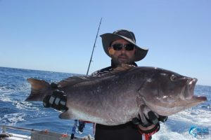 Rankin Cod Montebello Islands WA blue lightning charters